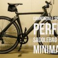 perfect-saddlebag-for-the-minimalist-cannondale-speedster-2